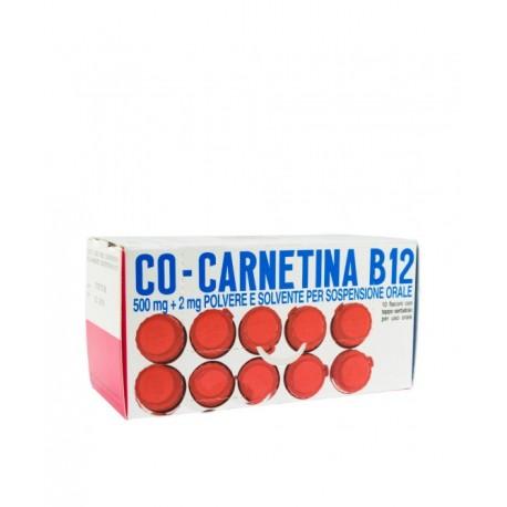 COCARNETINA B12 10 FLACONI 10 ML