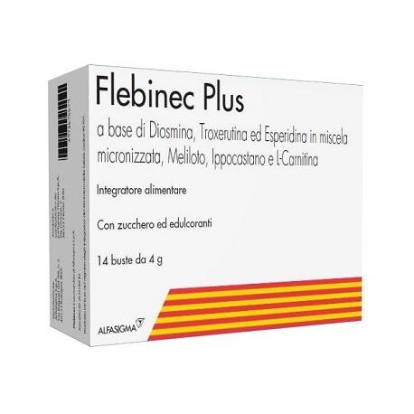 FLEBINEC PLUS 14 BUSTINE