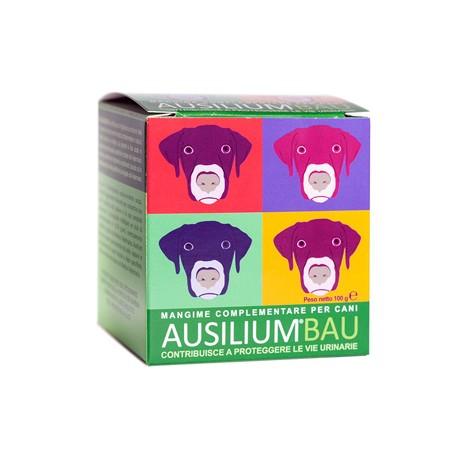 AUSILIUM BAU 100 GR