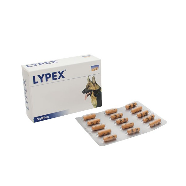 LYPEX 60 CAPSULE